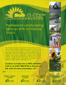 Sun And Sky Landscaping Flyer